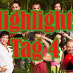 Die Highlights von Tag 4 im Dschungelcamp