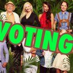 Umfrage: Wer soll heute Abend Dschungelkönig/in 2019 werden?